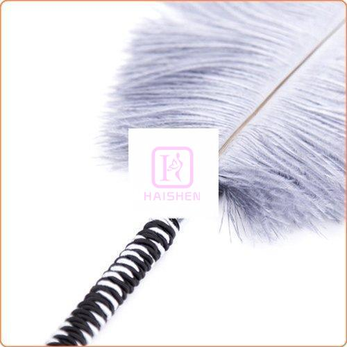 Playful Feathers Tickler