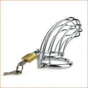 Bird Cage Chastity Device