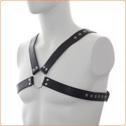 Deluxe Leather Chest Harness