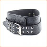Lichee Pattern Double Pin Buckle Collar