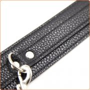 My Little Pet Collar and Leash