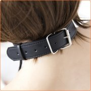 Pin Buckle Neck Collar With Clamp