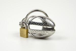 Male Chastity Device Adult Cock Cage with Curve Cock Ring BDSM Sex Toys Bondage Man Penis Chast