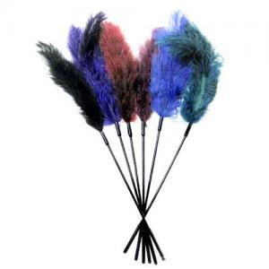 Wonderful Sexy Feather Stick for party Bacheloret